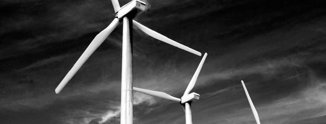 wind farm in black and white