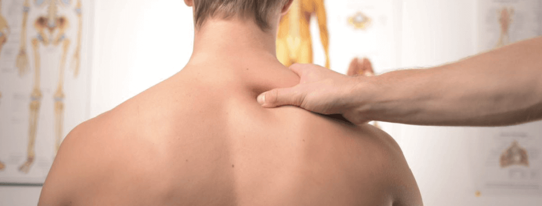 head and shoulder muscles
